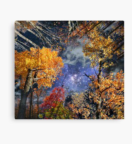 Deep Canopy Canvas Print