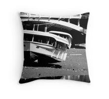 High & Dry Throw Pillow