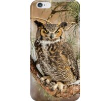 Great Horned Owl in Winter iPhone Case/Skin