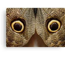 What does this look like to you??? Luda got it right!  Its a butterfly ..... Its a OWL butterfly Canvas Print