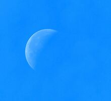 Half Moon, HD Photograph by tshirtdesign