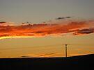 Electric Sky by Leanna Lomanski