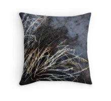 dried out Throw Pillow