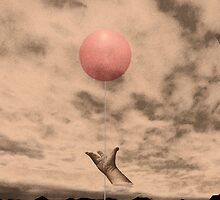 TRIAL BY BALOON by Paul Quixote Alleyne