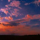 Ending Of A Beautiful Day by Ellen  Price - Greenwald