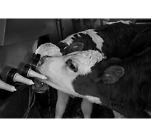 The Milk Bar Photographic Print