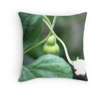 Baby Gourd Throw Pillow