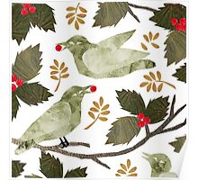Birds and Holly Poster