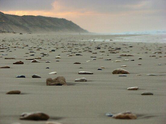 Stoney Beach by deannedaffy