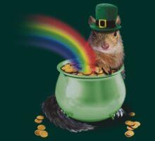 Irish Squirrel by jkartlife