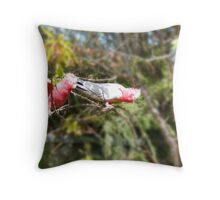 Two swinging galahs Throw Pillow