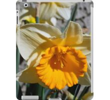yellow and white  daffodil flowers. floral photography. iPad Case/Skin