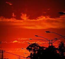 Red in the City by Lozzar Landscape