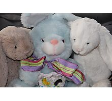 Three Easter Snuggly Bunnies Photographic Print