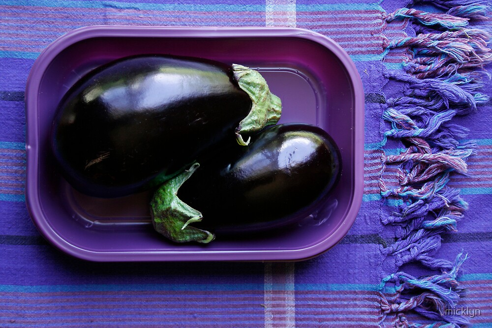 Purple Aubergine by micklyn
