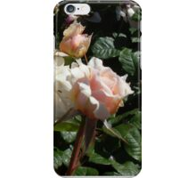 Rose 11 iPhone Case/Skin