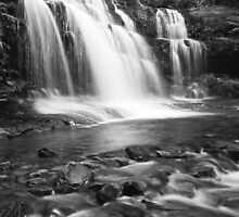 Liffey Falls by Andrew Harris