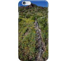 A Fallen Giant  iPhone Case/Skin