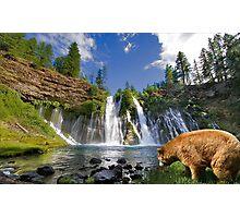 1135A-Environment Appreciation Photographic Print