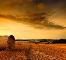 Midlothian Harvest by Derek Christie