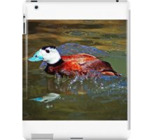 White Headed Duck iPad Case/Skin
