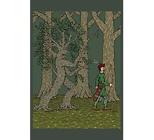 Wandering Ole Willow Photographic Print