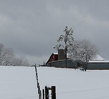 Fence Line to the Barn by krishoupt