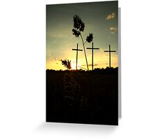willow grove Greeting Card