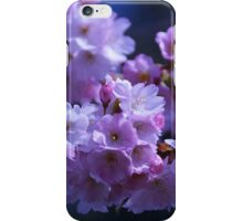 Spring is here iPhone Case/Skin