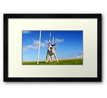 Practice makes perfect Framed Print