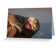 Laughing Seal Greeting Card