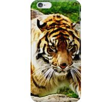 Prowling Tiger iPhone Case/Skin
