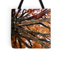 Autumnal Cypress Tote Bag