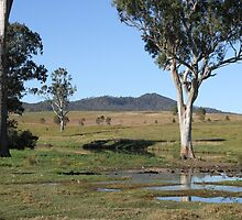 Laurie's Land by aussiebushstick