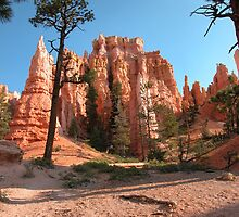 Bryce Canyon National Park by Luann wilslef