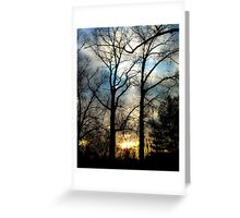 Mighty Oaks Greeting Card