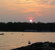 "Sunset - East Boothbay Harbor Maine by Edmond J. [""Skip""] O'Neill"