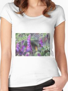 All creatures, great and small Women's Fitted Scoop T-Shirt