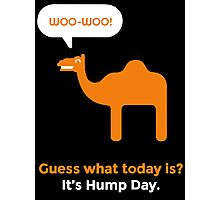 Hump Day Camel - Guess What Today is Photographic Print