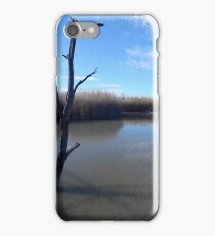 Dead Wood in the Water iPhone Case/Skin