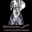 Weimaraners Supporting Bushfire Appeal. by Phoenix-Appeal