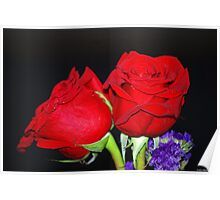 Red Roses 2 Poster