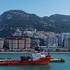 Panorama of Gibraltar from the Sea  by Steve