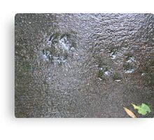 Concrete Memories Canvas Print