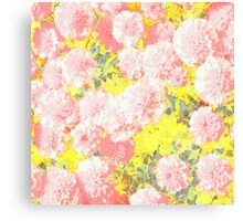 Mary Pink Pops Canvas Print