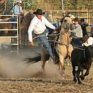 Steer Roper by Barrie Collins