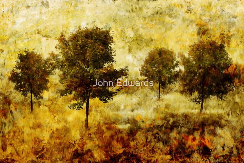 Five Trees by John Edwards