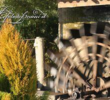 Dynamic Watermill by lefotodelmaui