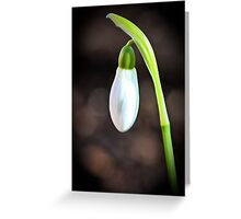 Nature's Floral Pearl Greeting Card