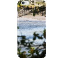 Arch & Leaves  iPhone Case/Skin